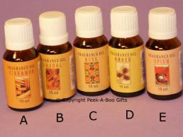 Exotic Essential Fragrance Oil 6 Assorted 15ml Bottle