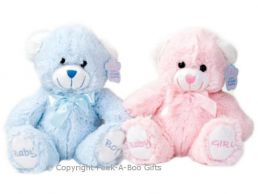 "8"" Baby Boy or Girl Embroidered Soft Pile Bear Soft Toy"