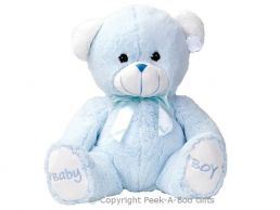 17'' Baby Boy Blue Embroidered Soft Pile Bear Soft Toy