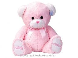 17'' Baby Girl Pink Embroidered Soft Pile Bear Soft Toy