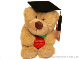 Favourite Teacher Thank You Soft Toy Bear Holding Embroidered Apple