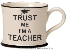 Moorland Pottery Trust Me I'm a Teacher Mug